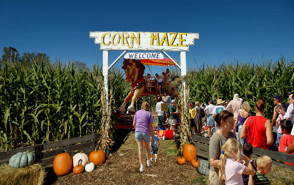 CORN MAZE ROCKER copy